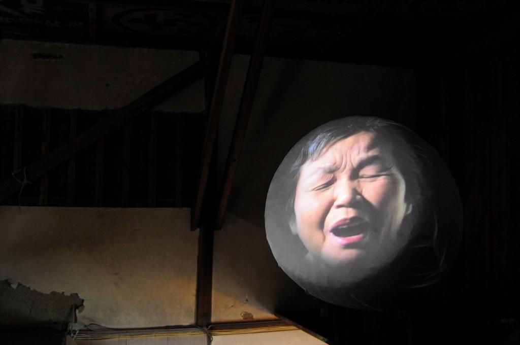 umeboshi portrait Yoriiza 2